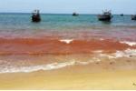 Biển Quảng Bình xuất hiện dải nước màu đỏ bất thường