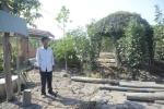 Đình chỉ điều tra vụ dựng chòi nuôi vịt của chủ đất quán Xin Chào