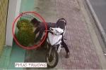 Clip: Người đàn ông ngang nhiên bê trộm hai chậu hoa vào sáng mùng 1 Tết