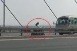 Clip: Cô gái chạy xe đạp điện ngược chiều vun vút trên làn ô tô cầu Nhật Tân