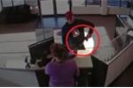Clip: Cướp hậu đậu đánh rơi súng vào tay nữ nhân viên và cái kết cười ra nước mắt