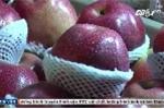 TP.HCM: Tiểu thương xé nhãn, trái cây Trung Quốc trà trộn thị trường cận Tết