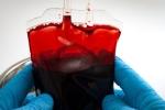 Nghiên cứu đột phá chuyển các nhóm máu sang O có thể cứu được hàng triệu người