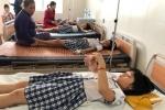 19 học sinh nhập viện do uống trà sữa nhiễm khuẩn tụ cầu vàng: Khuẩn tụ cầu vàng nguy hiểm thế nào?