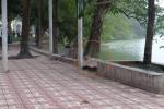 Nhảy xuống hồ Hoàn Kiếm bơi ra tháp Rùa, người đàn ông chết đuối
