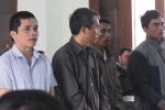 Điều tra hàng loạt quan chức Phú Yên tiếp tay phá rừng