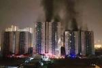 Infographic: Toàn cảnh vụ cháy chung cư cao cấp Carina ở TP.HCM làm 14 người chết