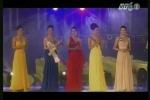 Việt Nam loạn các cuộc thi sắc đẹp