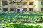 Điểm chuẩn Học viện Nông nghiệp Việt Nam cao nhất là 23 điểm