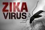 Thông tin mới nhất về dịch Zika tại TPHCM