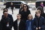 Angelina Jolie có nguy cơ mất quyền nuôi con