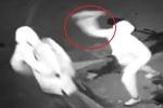 Clip: Trộm ném gạch trúng đầu khiến đồng bọn ngất lịm