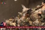 Bới tung 15 tấn rác để tìm gần 700 triệu đồng 'vứt nhầm'