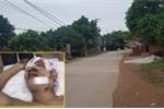 Nhóm côn đồ truy sát 2 thanh niên trong quán bia ở Hà Nội