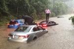 Video: Mưa lớn biến đường phố thủ đô Mỹ thành sông, Nhà Trắng cũng không 'thoát'