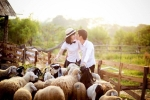 Video: Cận cảnh đàn cừu 20 con chuyên làm mẫu ảnh ở Hà Nội