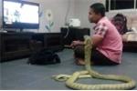 Người đàn ông kết hôn với rắn hổ mang vì tin là người yêu đầu thai