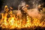 Cháy rừng 14 ngày không dứt ở California: Tổng thống Trump trách cựu Tổng thống Obama
