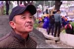 Người Hà Nội xót xa tiếc nuối hàng cây cổ thụ trên đường Phạm Văn Đồng
