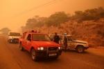 Thảm kịch cháy rừng Hy Lạp khiến 83 người thiệt mạng: Có dấu hiệu cố ý phóng hỏa