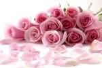 Những lời chúc ngày 8/3 dành cho bạn gái hay nhất