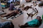 Nắng nóng kinh hoàng 44°C, 65 người chết trong vòng 3 ngày