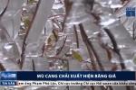 Video: Mù Cang Chải bao phủ bởi băng giá