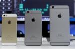 iPhone 5S vẫn hút khách trước cơn lốc iPhone 6 giá rẻ