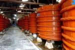 Bộ Nông nghiệp và Phát triển nông thôn: 100% mẫu nước mắm không nhiễm thạch tín