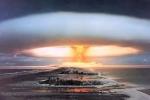 Loại nấm kì diệu có khả năng chống phóng xạ hạt nhân