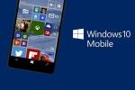 Tại sao thế lực như Microsoft vẫn sống dựa iPhone và Android?