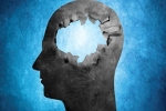 Giải mã thế nào với cả trăm con người vẫn sống bình thường dù không có não?