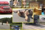 Những vụ tài xế cố tình tông CSGT gây bức xúc năm 2017