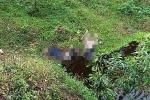 Phát hiện 2 thi thể đầy máu dưới mương nước ở Huế