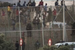 1.100 người vượt rào sang Tây Ban Nha 'ăn Tết'