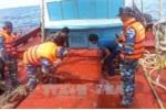 Bắt giữ hàng loạt tàu buôn lậu dầu trên vùng biển Tây Nam