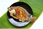 Thực chất ăn thịt hay ăn cá tốt hơn?