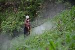 Kinh hoàng cảnh tượng thuốc độc tràn ngập vùng cao Sơn La