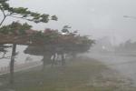 Diễn biến mới nhất về bão số 2: Đêm nay miền Bắc mưa rất to