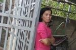 Nữ sinh giao gà bị sát hại ở Điện Biên: Nghi can Bùi Kim Thu từng đút cơm cho nạn nhân