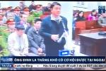 Ông Đinh La Thăng, Trịnh Xuân Thanh khó được tại ngoại