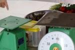 Hà Nội: Kinh hãi trường mầm non dùng rau chứa thuốc trừ sâu làm thức ăn cho học sinh