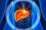 Làm gì để giảm viêm gan?