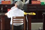 Cần đề xuất giám đốc thẩm ngay vụ ấu dâm ở Bà Rịa - Vũng Tàu