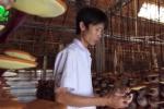 Vua nấm linh chi đất Đồng Nai kiếm hàng tỷ đồng/năm