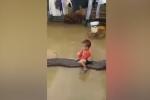 Video bé trai cưỡi trăn ở Việt Nam lên báo Anh