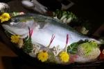 Chơi độc sập gỗ nu 3 tỷ, săn lùng cá Buri Nhật Bản bạc triệu
