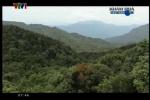Video: Bí ẩn giếng nước thần trên đỉnh Trường Sơn