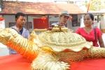 Video: Rùa dát vàng 9999 giá cả trăm triệu đồng ở Hà Nội