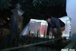 Video: Dân trèo rào, vượt tường, chen lấn ngộp thở ngày khai ấn đền Trần